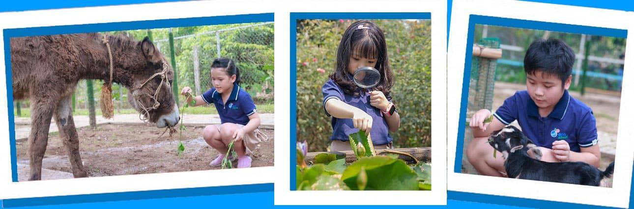 Khu Trang Trai Vuon Tuoc